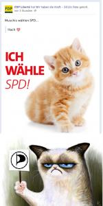 FDP-SPD-PP